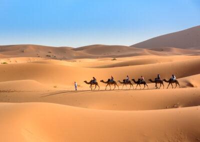 # Best 3 Days tour from Fes to Marrakech via Sahara